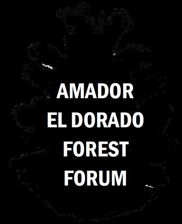 Forest Forum